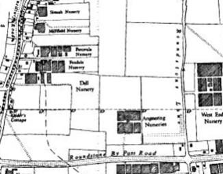site survey, pre-construction planning